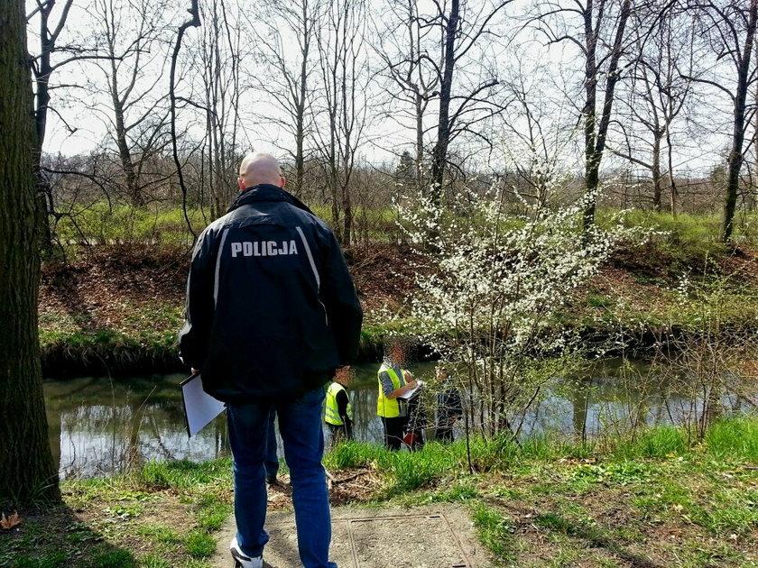 Zwłoki znaleziono w walizce w rzece Kłodnica w Gliwicach