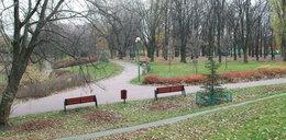 Koszmarne odkrycie w Warszawie. Znaleziono zwłoki na plenerowej siłowni