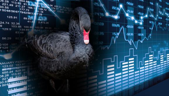 Crni labud - nepredvidiva situacija koja ostavlja razorne posledice na tržišta