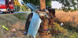 Makabra na drodze. Peugeot uderzył w drzewo. Zginęli 17-latek i 19-latek