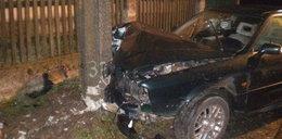 Pijany kierowca zabił pięć krów