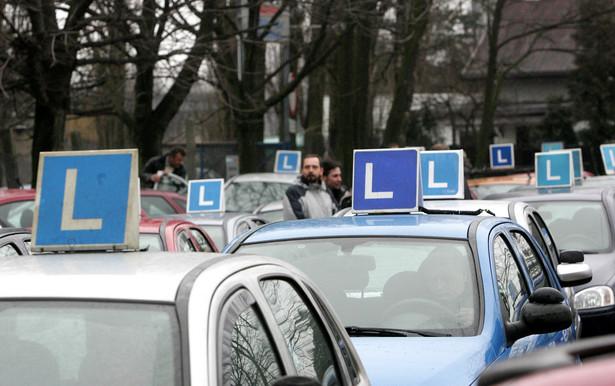 Dla młodych kierowców prawo jazdy na dwa lata i zielony listek naklejony na szybę.