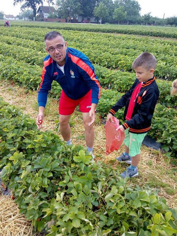 Branislav Nedimović sa sinom u berbi jagoda