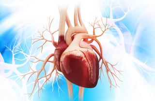 Eureka DGP: Jak skopiować ludzkie serce?