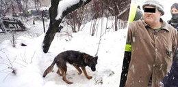 Przerażające piekło psów na Lubelszczyźnie, zdjęcia mrożą krew w żyłach. Czasu jest niewiele