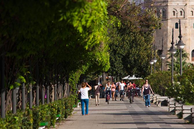 37 posto Španaca do posla hoda ili vozi bicikl, a samo 52 posto vozi auto
