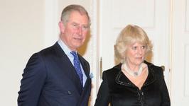 Książę Karol i księżna Camilla mają nieślubne dziecko?