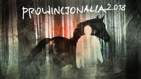 Prowincjonalia 2018: 52 filmy w programie festiwalu