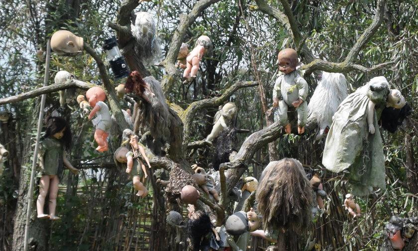 Mroczne historia Wyspy Lalek. Po tajemniczej śmierci młodej dziewczyny zaczęły się tam dziać dziwne rzeczy