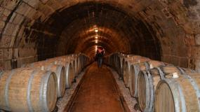 Podkarpacie zaprasza turystów na wino