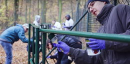 Pracownicy Allegro pomagali w poznańskim zoo