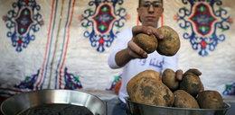 W całym kraju brakuje ziemniaków! Interweniuje policja