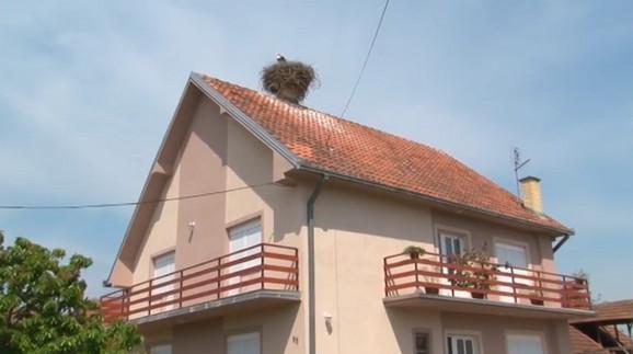 Krov kuće porodice Blažić stanište je roda već 32 godine