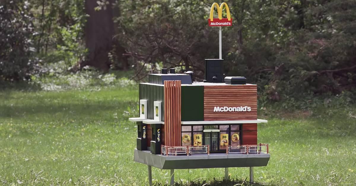 McDonald's baut ein Mini-Restaurant für Bienen – und es ist leider richtig süß!