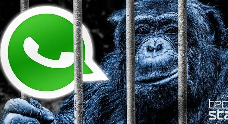 WhatsApp-Übernahme durch Facebook möglicherweise illegal