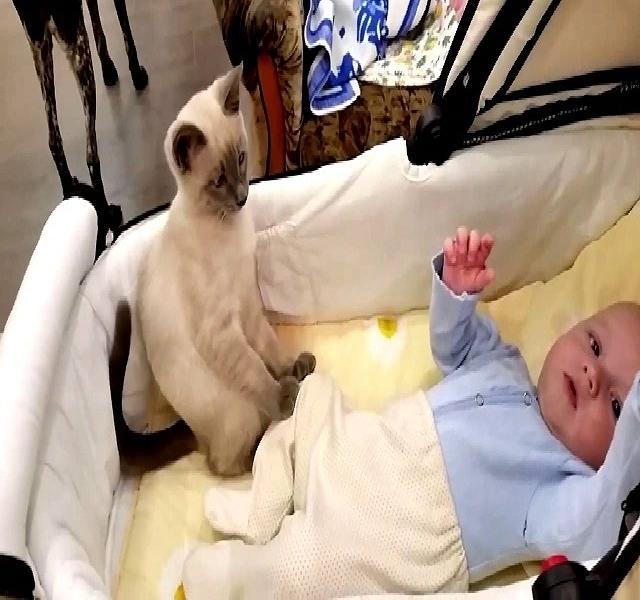 Mikortól vigyázhat más a babára?