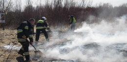 Wandale spalili platformę widokową