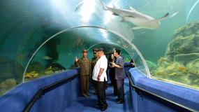 Korea Północna wybuduje podwodny hotel w Wonsan?