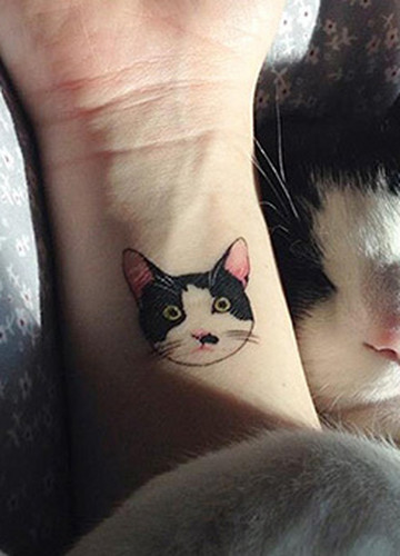Tatuaże Dla Wielbicieli Kotów Noizz