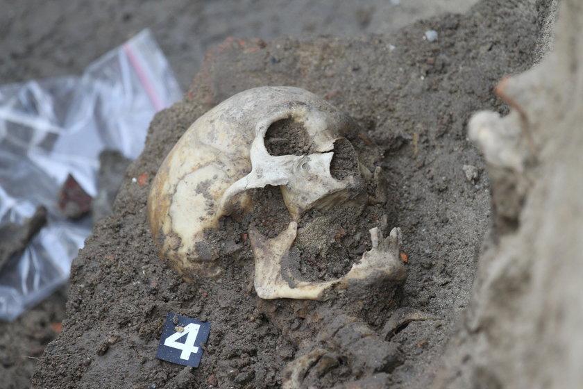Ludzkie szczątki na deptaku w Rzeszowie