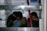 Carinici migrante često pronalaze u tovarima kamiona