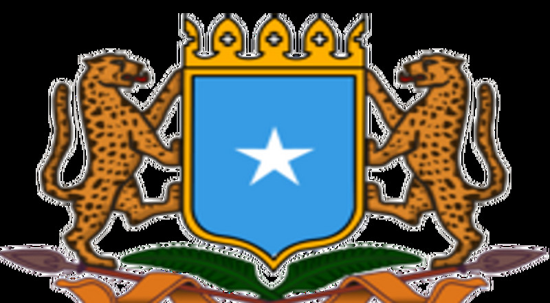 Coronavirus - Somalia: Update on COVID-19 in Somalia (25 May 2020)
