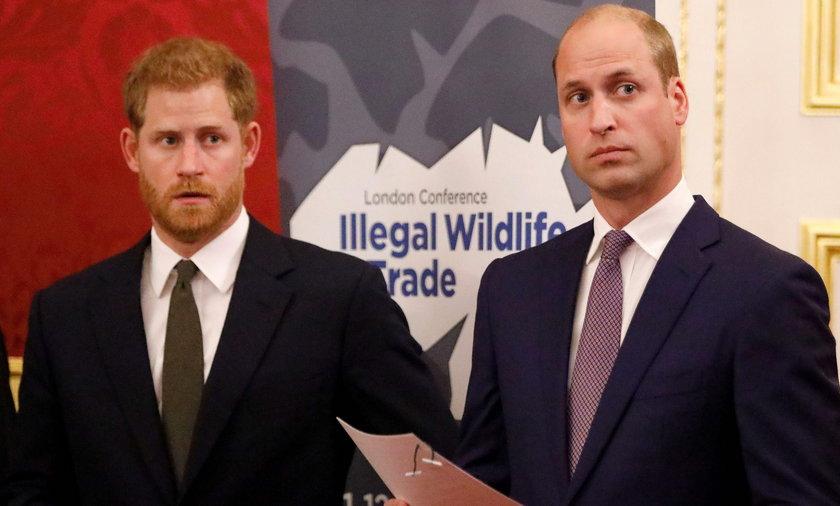 William miał plan, jak powstrzymać brata przed ślubem z Meghan. Czy Harry mu kiedyś wybaczy?