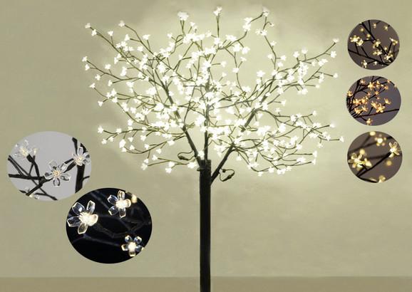 Sakura svetleće drvo