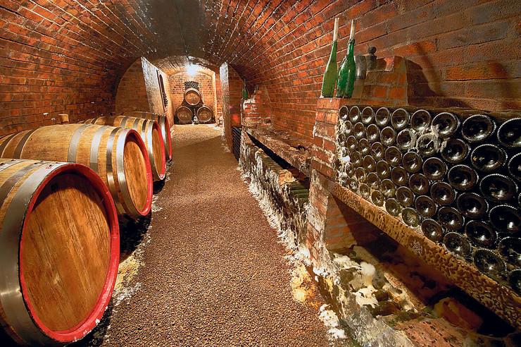 Vino, podrum vina, pokrivalica