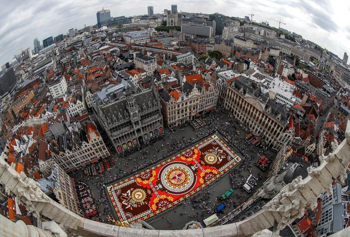A 1,800 square meters flower carpet is seen at Brussels' Grand Place