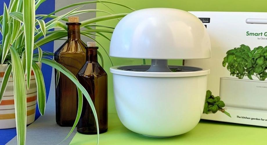Smarte Indoor-Gärten: Gemüse & Kräuter im Haus züchten