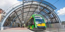 Przedłużenie Pestki bez tramwajów!