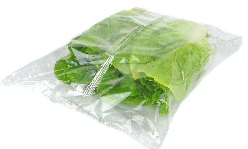 W pakowanych sałatach mogą być groźne bakterie