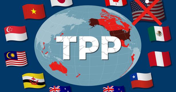 TPP ma być podpisane 8 marca w Chile przez przedstawicieli 11 krajów: Australii, Brunei, Chile, Japonii, Kanady, Malezji, Meksyku, Nowej Zelandii, Peru, Singapuru i Wietnamu