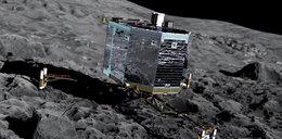 Lądownik Philae znalazł obcych na komecie