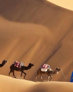 Wakacje w Maroku. Wycieczka na pustynie, trekking czy wspinaczka?
