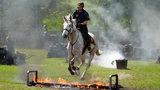 Konie ćwiczyły przed akcją