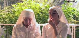 Samozwańcze zakonnice z Kalifornii uprawiają i palą marihuanę