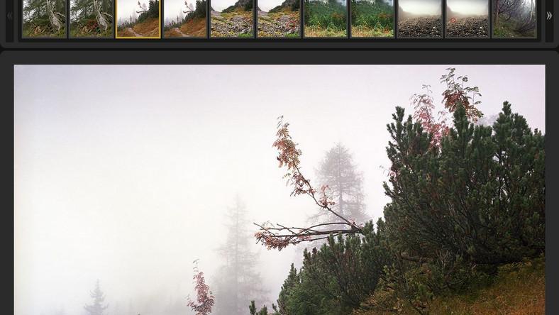 Aby dostrzec snajperów, najlepiej oglądać zdjęcia w bardzo dużym powiększeniu!