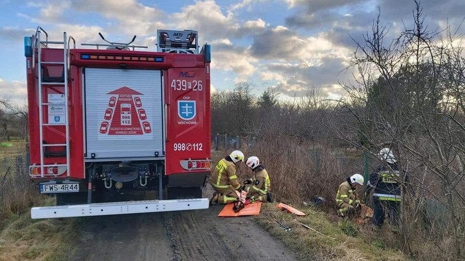 Strażacy podczas akcji ratowania sarny fot. OSP Wschowa