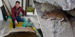 Szczury zmieniły ich życie w piekło!