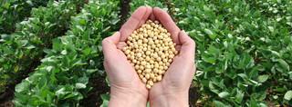 Gmina nie może pobierać podatku rolnego bez dzielenia się z izbą rolniczą