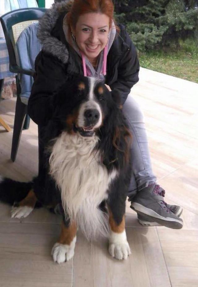 Dunja Kovač: Pas koji se uzima za šetnju mora biti redovno vaksinisan i čipovan