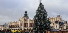 Świąteczne dekoracje zawitały do Krakowa