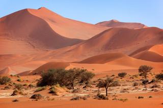 Brzemię Namibii: Afrykanie wiedzą jak walczyć o prawdę historyczną
