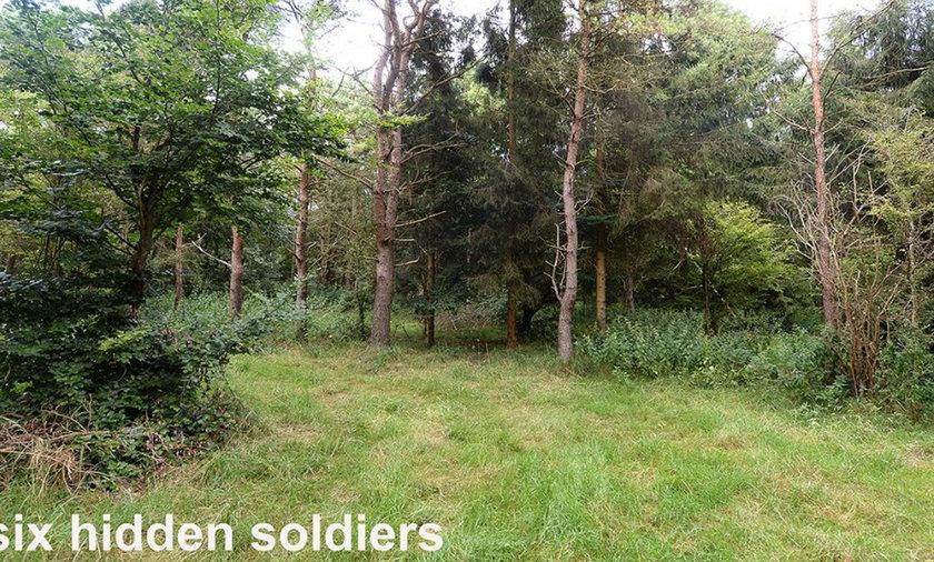 Zagadka: Komandosi ukryci w lesie. Znajdziesz ich? Tylko 3% potrafi!