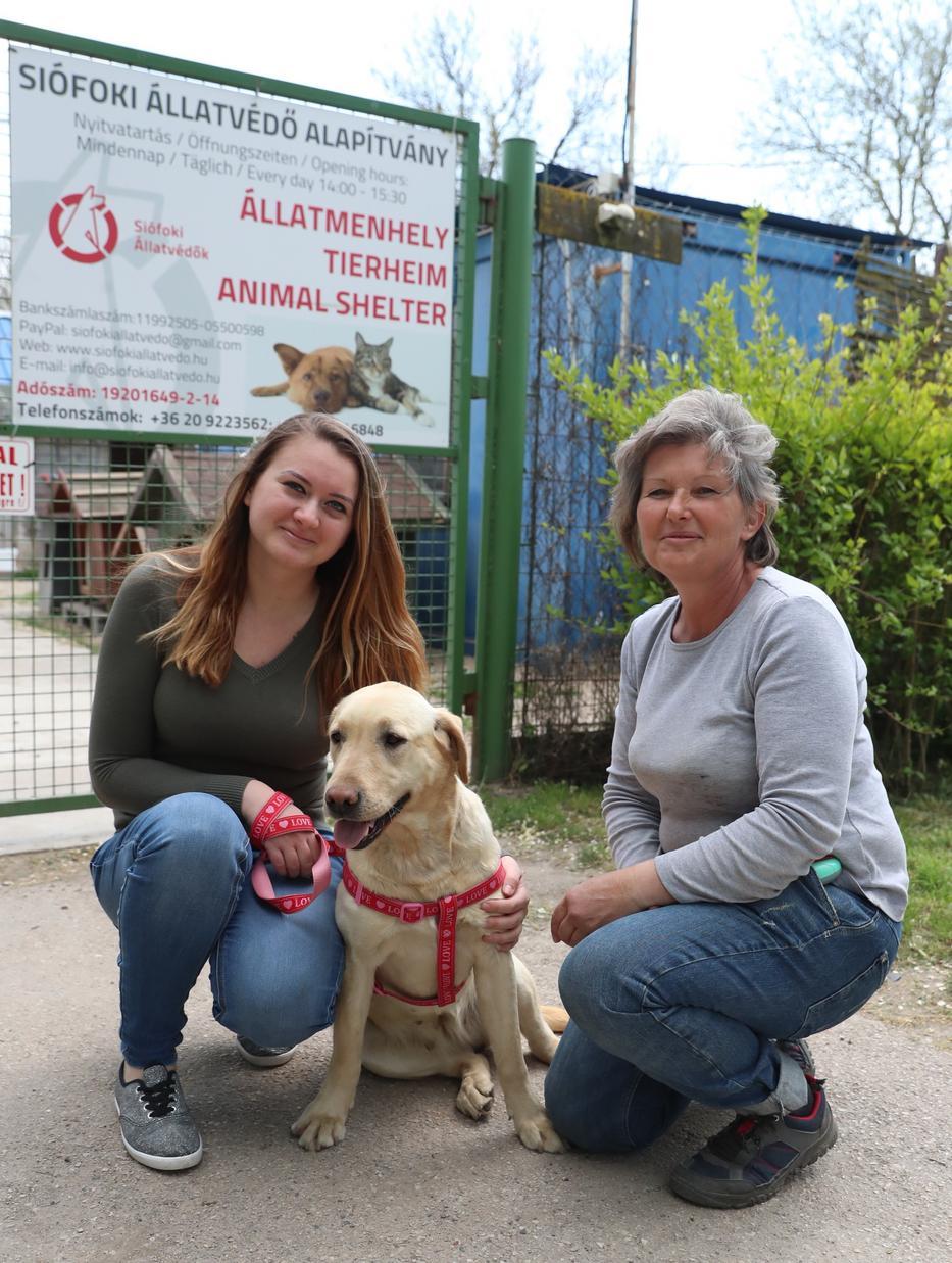A gazdi, a kutyus és Vörös Zsuzsa, a menhely vezetője, aki visszaadta Katrint /Fotó: Pozsonyi Zita