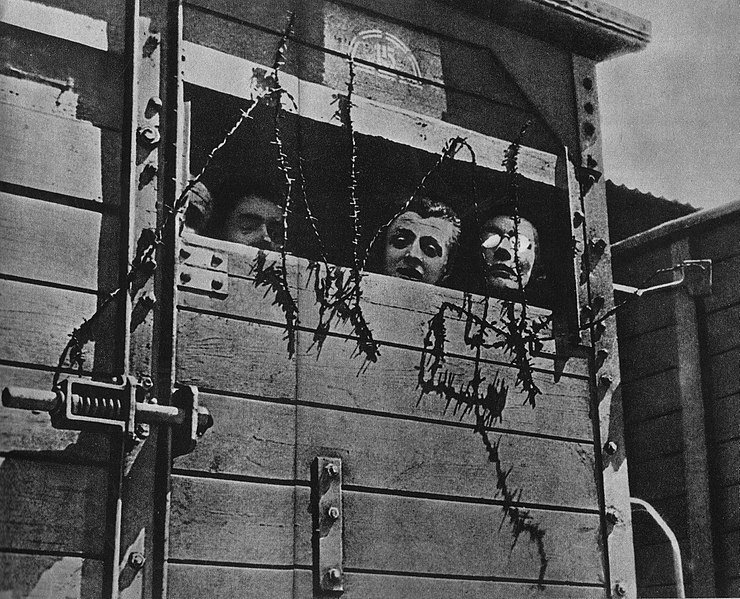 Żydzi byli transportowani wagonami do obozów zagłady - domena publiczna
