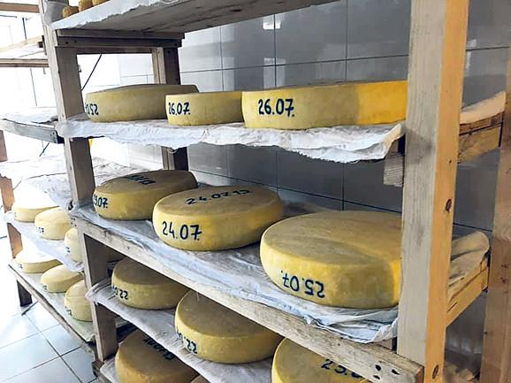 Kako kažu, njihov sir od nepasterizovanog mleka sa dugim zrenjem liči na trapiste i kačkavalje
