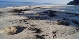 Złodzieje bursztynu niszczą plaże!